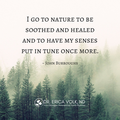 Inspirational quote: I go to nature to be soothed and healed and to have my senses put in tune once more - John Burroughs