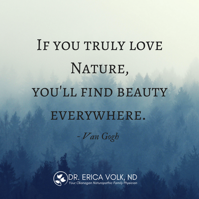 Inspirational quote: If you truly love nature, you'll find beauty everywhere - Van Gogh