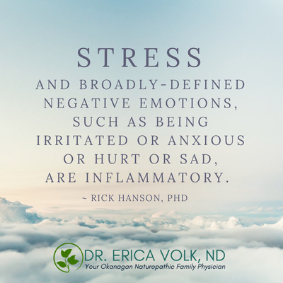 Stress and broadly-defined negative emotions, such as being irritated or anxious or hurt or sad, are inflammatory. - Rick Hanson, PhD