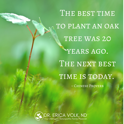 Inspirational quote: The best time to plan an oak tree was 20 years ago. The next best time is today. - Chinese proverb