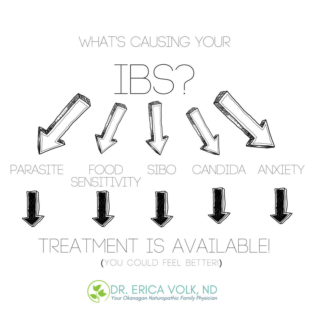 infographic describing underlying causes of IBS including parasites, food sensitivities, SIBO, candida, and anxiety