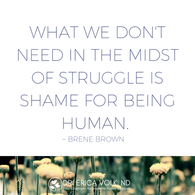 Inspirational quote: What we don't need in the midst of struggle is shame for being human - Brene Brown